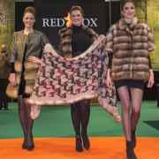 Red Fox Award 2019- Fashion Show